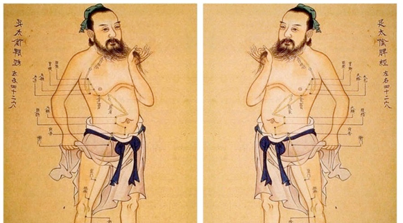 Mri Brain Scans Of Of Ancient Chinese Acupuncture Neurodope