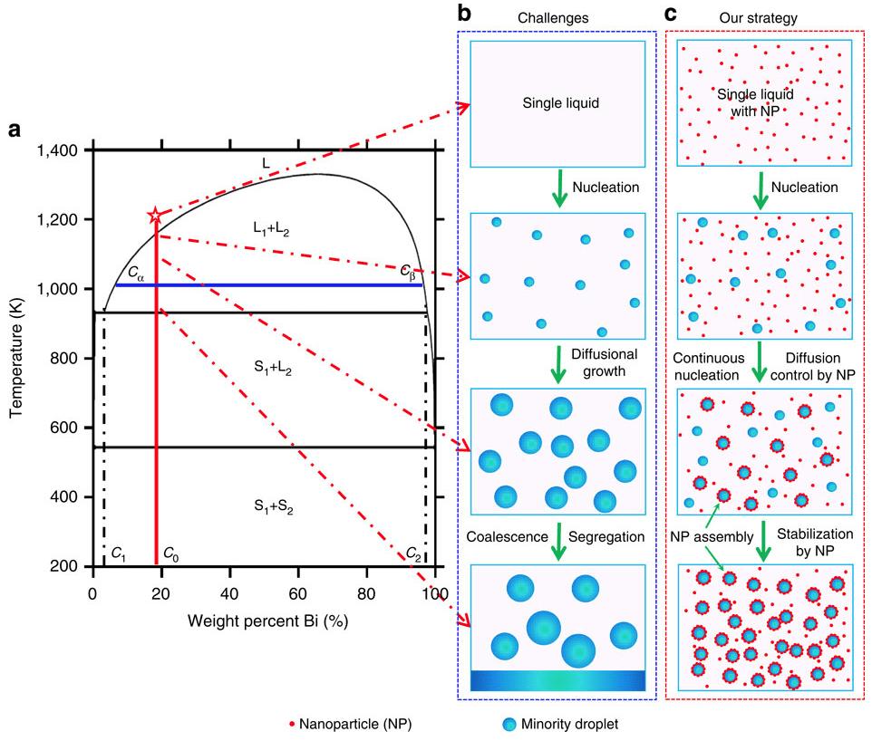 nanoparticles inorganic chart -neurodope.com