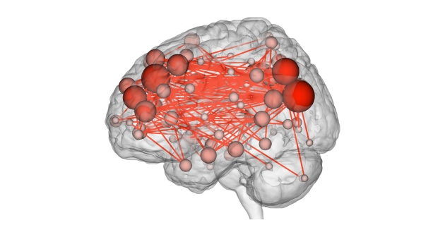 Brain scans pinpoint individuals from a crowd
